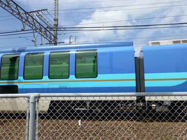 P1030005.jpg