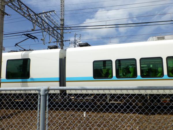 P1030011.jpg