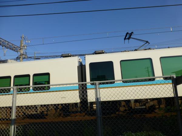 P1030158.jpg