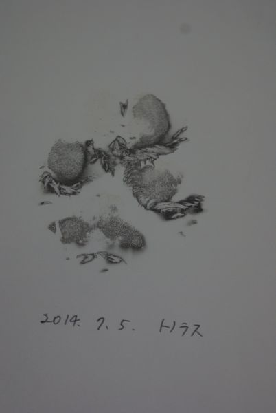 20140706-12