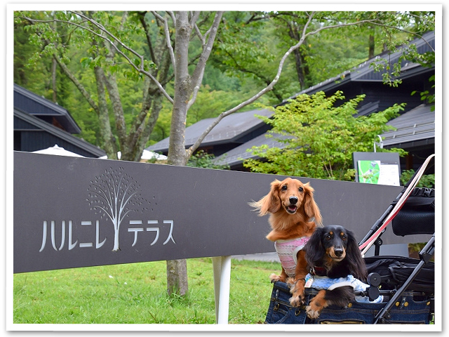 軽井沢散策