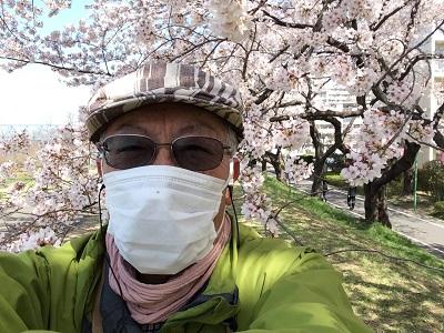 福生の桜堤5