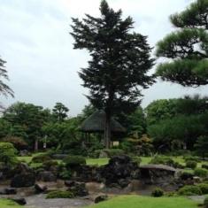 伊藤邸庭2