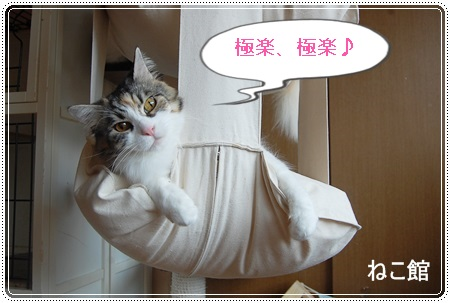 blog10_20140407125410083.jpg