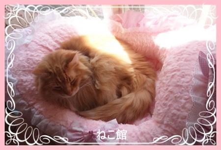 blog2_201404230938493b1.jpg