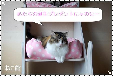 blog5_20140519231748709.jpg