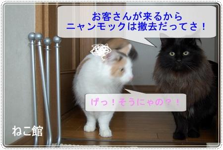 blog6_20140811112832398.jpg