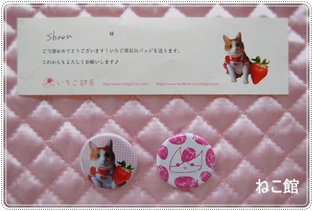 blog8_20140311003525e88.jpg