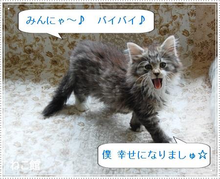 blog8_2014052714112871e.jpg