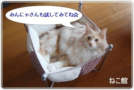 blog9_2014031100352722c.jpg