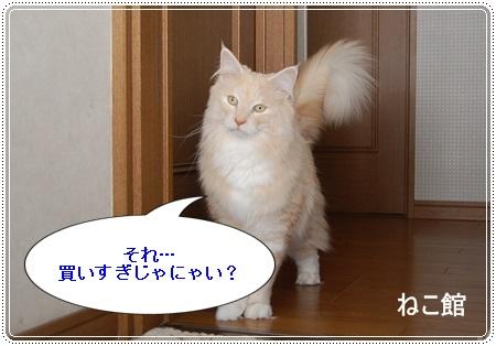 blog_201403110034555f9.jpg