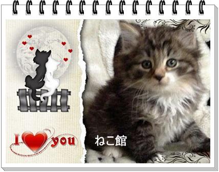 blog_20140519113709cd3.jpg