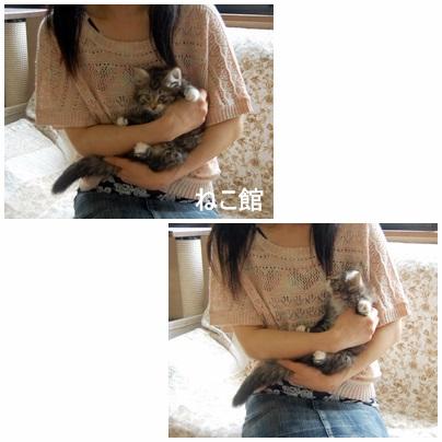 blog_2014052714232653c.jpg