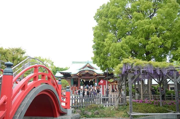亀戸天神社 20140429 (9)