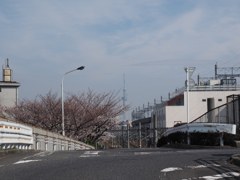 oji_0017f.jpg