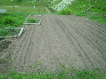 20140525畑