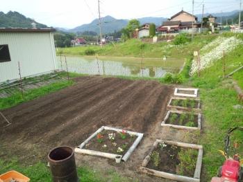 20140525畑2