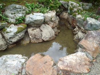 20140613池の水 抜きました。2