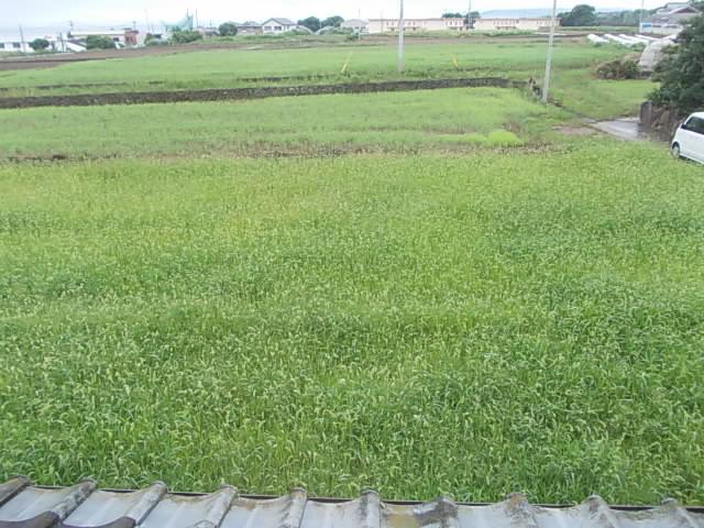 Farm 20140627