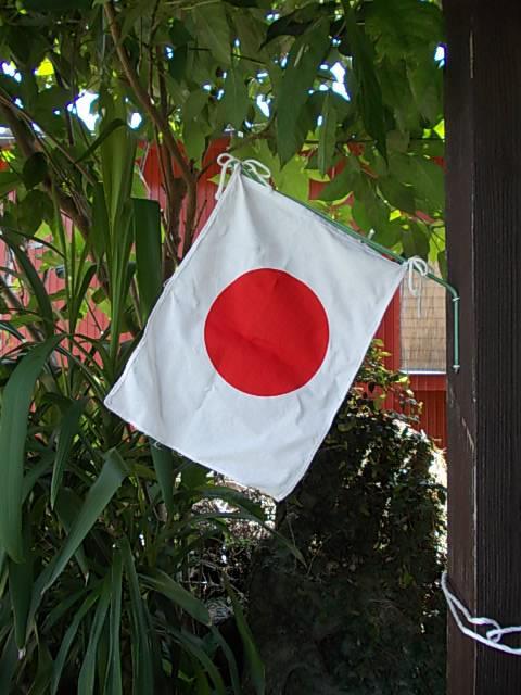 Flag 20140721