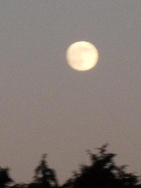 Full moon 20140908