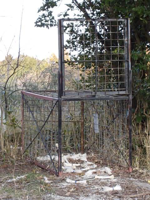 Boar trap 20140224
