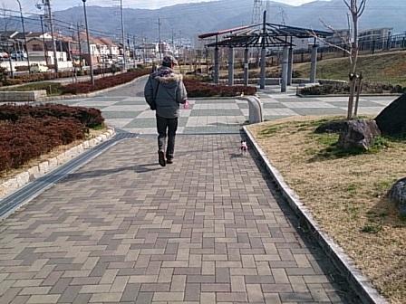 DSC_0366散歩