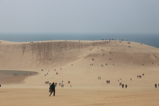 IMG_7238砂漠
