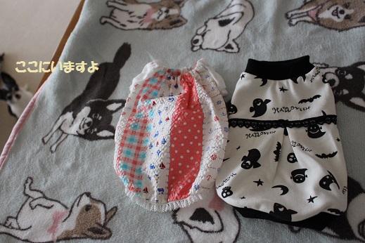 IMG_0645服
