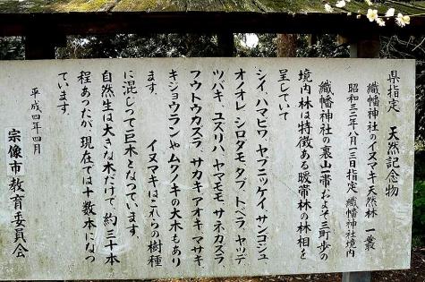 原生林の説明♪