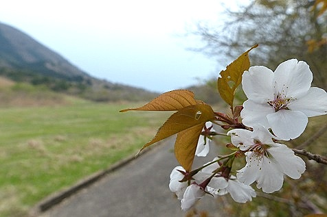 倉木山へ♪