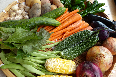 今の自家製野菜♪