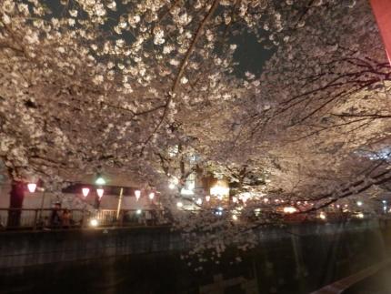 小野田商店 &花見 (141)