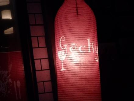 Gecky (4)
