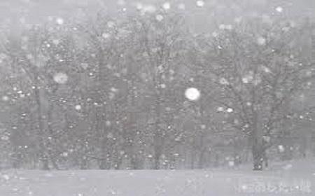 突然の低気圧~吹雪