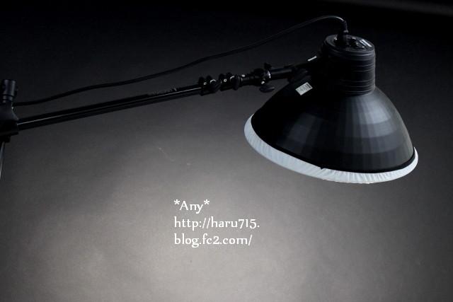 20140811 (2)