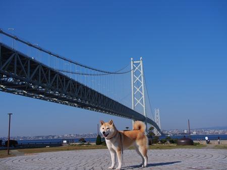 明石海峡大橋と