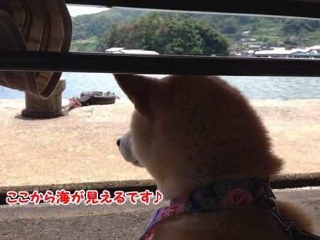海が見える♪