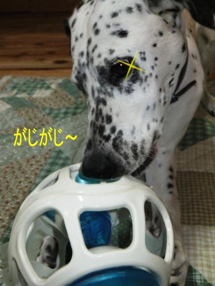 blog_0425_185638.jpg