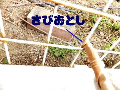 blog_0505_113543.jpg