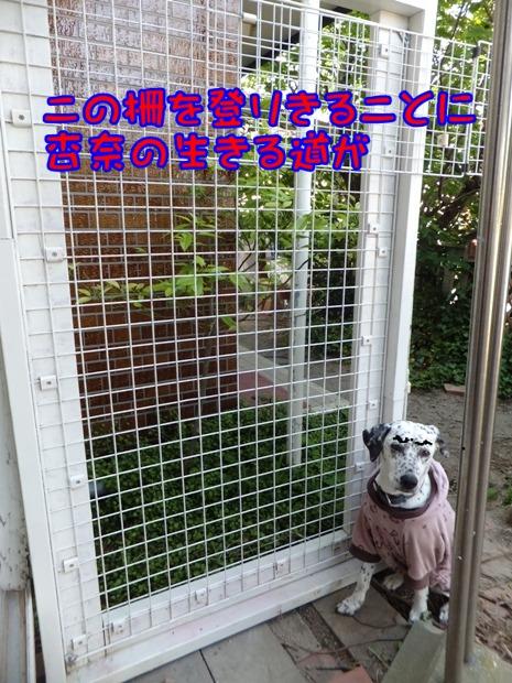 blog_0511_085841.jpg