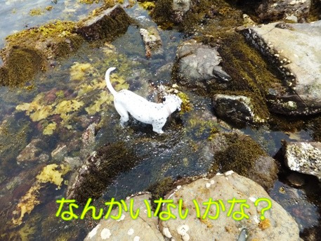 blog_0614_122446.jpg
