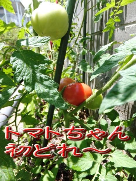 blog_0628_121618.jpg