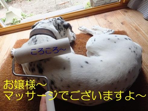 blog_0628_164349.jpg