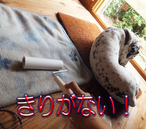blog_0628_165550.jpg