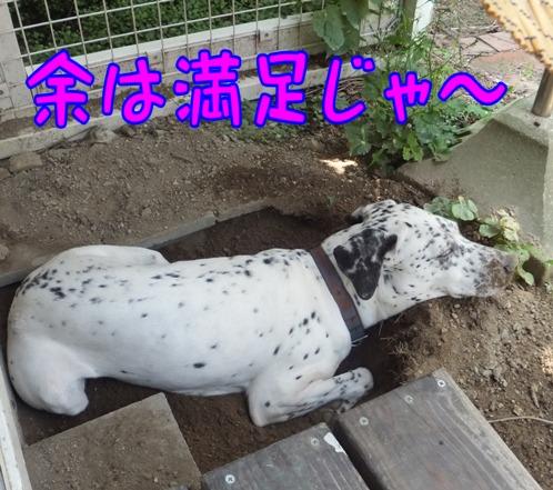 blog_0720_114335.jpg