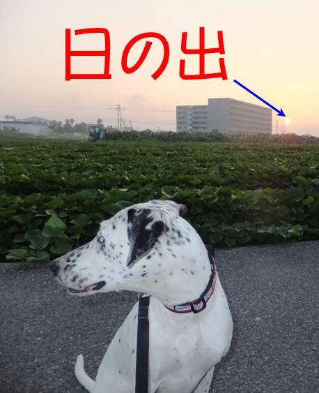 blog_0727_060202.jpg