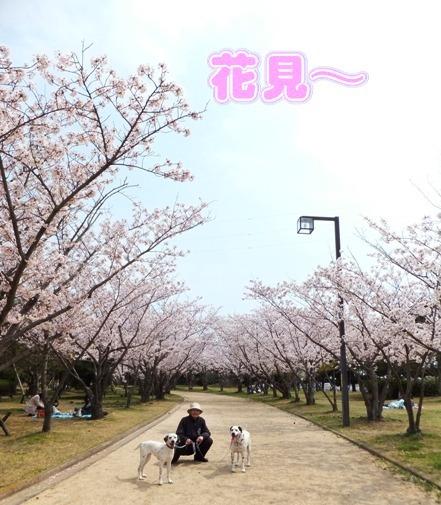 blog__133325.jpg