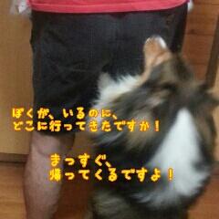 fc2_2014-09-05_12-56-31-031.jpg