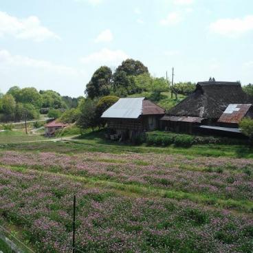 ふるさと村の風景
